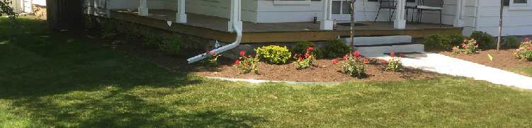 mulch and flower bed